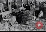 Image of British soldiers Palestine desert, 1935, second 3 stock footage video 65675028109