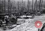 Image of British artillery firing in Battle of the Ancre France, 1916, second 10 stock footage video 65675028141