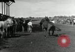 Image of Cowboys Las Vegas New Mexico USA, 1926, second 5 stock footage video 65675028164