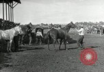 Image of Cowboys Las Vegas New Mexico USA, 1926, second 6 stock footage video 65675028164