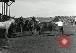 Image of Cowboys Las Vegas New Mexico USA, 1926, second 7 stock footage video 65675028164