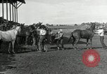 Image of Cowboys Las Vegas New Mexico USA, 1926, second 9 stock footage video 65675028164