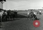 Image of Cowboys Las Vegas New Mexico USA, 1926, second 11 stock footage video 65675028164