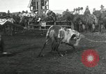 Image of Cowboys Las Vegas New Mexico USA, 1926, second 5 stock footage video 65675028166