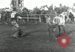 Image of Cowboys Las Vegas New Mexico USA, 1926, second 6 stock footage video 65675028166