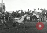 Image of Cowboys Las Vegas New Mexico USA, 1926, second 10 stock footage video 65675028166