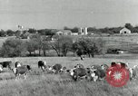 Image of cattle ranches Texas United States USA, 1942, second 1 stock footage video 65675028175