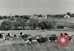 Image of cattle ranches Texas United States USA, 1942, second 3 stock footage video 65675028175