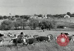 Image of cattle ranches Texas United States USA, 1942, second 5 stock footage video 65675028175