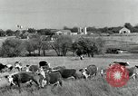 Image of cattle ranches Texas United States USA, 1942, second 6 stock footage video 65675028175