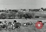 Image of cattle ranches Texas United States USA, 1942, second 7 stock footage video 65675028175