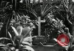 Image of Jose Rizal Manila Philippines, 1936, second 2 stock footage video 65675028181