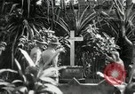 Image of Jose Rizal Manila Philippines, 1936, second 8 stock footage video 65675028181
