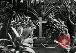 Image of Jose Rizal Manila Philippines, 1936, second 9 stock footage video 65675028181