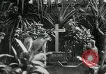 Image of Jose Rizal Manila Philippines, 1936, second 10 stock footage video 65675028181