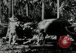 Image of men Philippines, 1936, second 2 stock footage video 65675028187