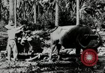 Image of men Philippines, 1936, second 4 stock footage video 65675028187
