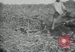 Image of man Philippines, 1936, second 8 stock footage video 65675028188