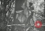 Image of man Philippines, 1936, second 3 stock footage video 65675028189