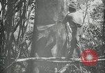 Image of man Philippines, 1936, second 5 stock footage video 65675028189
