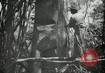 Image of man Philippines, 1936, second 10 stock footage video 65675028189