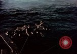 Image of Australian prisoners of war Philippines, 1944, second 11 stock footage video 65675028204