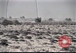Image of US tanks Iraq, 1991, second 2 stock footage video 65675028321