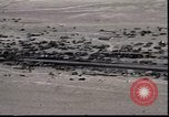 Image of Highway of Death Kuwait, 1991, second 1 stock footage video 65675028326