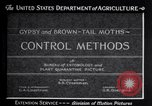 Image of gypsy moths and other pest United States USA, 1928, second 9 stock footage video 65675028360