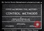 Image of gypsy moths and other pest United States USA, 1928, second 10 stock footage video 65675028360