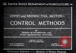 Image of gypsy moths and other pest United States USA, 1928, second 11 stock footage video 65675028360