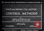 Image of gypsy moths and other pest United States USA, 1928, second 12 stock footage video 65675028360