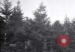 Image of inspection for gypsy moths United States USA, 1928, second 11 stock footage video 65675028361