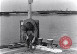 Image of marine borer Edgewood Arsenal Maryland USA, 1930, second 6 stock footage video 65675028369