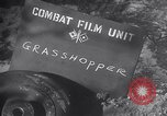 Image of piper cub Pacific Theater, 1944, second 8 stock footage video 65675028378