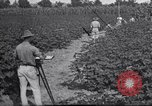 Image of Owens United States USA, 1921, second 11 stock footage video 65675028392