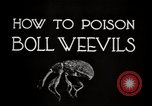Image of poisoning Boll Weevils United States USA, 1921, second 11 stock footage video 65675028395
