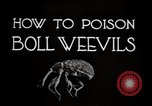 Image of poisoning Boll Weevils United States USA, 1921, second 12 stock footage video 65675028395