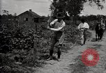 Image of government expert teaches use of insecticide United States USA, 1921, second 12 stock footage video 65675028401