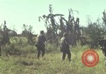 Image of United States Marines Con Thien Vietnam, 1967, second 10 stock footage video 65675028471