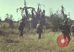 Image of United States Marines Con Thien Vietnam, 1967, second 11 stock footage video 65675028471