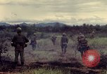 Image of United States Marines Con Thien Vietnam, 1967, second 7 stock footage video 65675028475