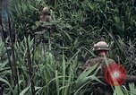 Image of United States Marines Khe Sanh Vietnam, 1967, second 3 stock footage video 65675028477