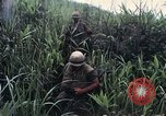 Image of United States Marines Khe Sanh Vietnam, 1967, second 4 stock footage video 65675028477