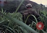 Image of United States Marines Khe Sanh Vietnam, 1967, second 9 stock footage video 65675028477