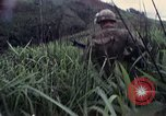 Image of United States Marines Khe Sanh Vietnam, 1967, second 10 stock footage video 65675028477