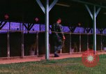 Image of K-9 sentry dogs Phu Cat Air Base Vietnam, 1969, second 6 stock footage video 65675028491
