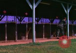 Image of K-9 sentry dogs Phu Cat Air Base Vietnam, 1969, second 8 stock footage video 65675028491