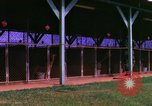 Image of K-9 sentry dogs Phu Cat Air Base Vietnam, 1969, second 9 stock footage video 65675028491