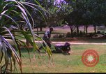 Image of K-9 sentry dog training Phu Cat Air Base Vietnam, 1969, second 5 stock footage video 65675028492